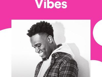 Zefanio staat op de cover van de 'Vibe' playlist op Spotify!